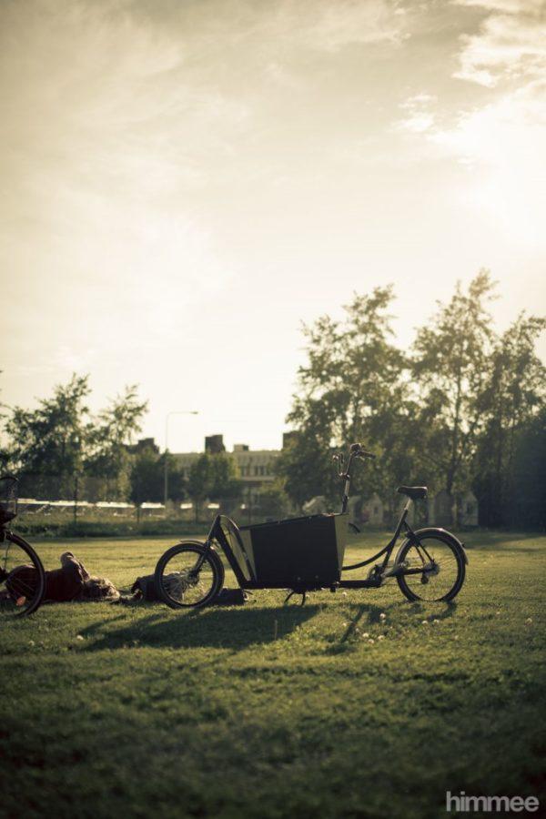 Christiania Bikes 2Wheeler