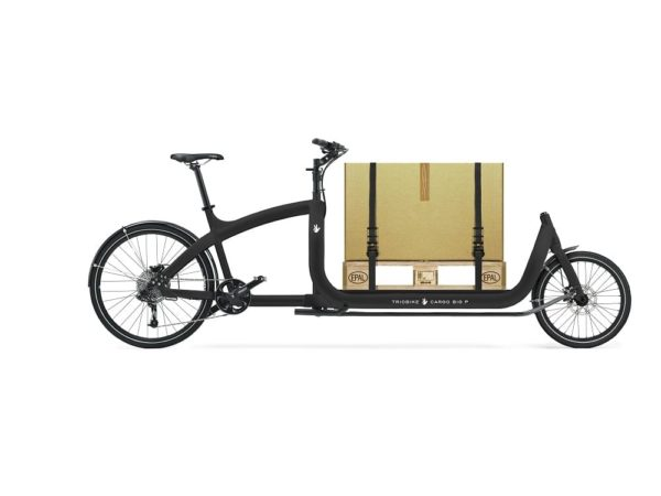 trioBike Cargo Big 2-renkainen laatikkopyörä